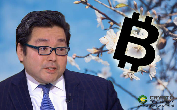 Bitcoin [BTC] - Tom Lee de Fundstrat