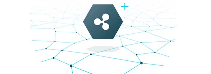 xrp ledger ripple