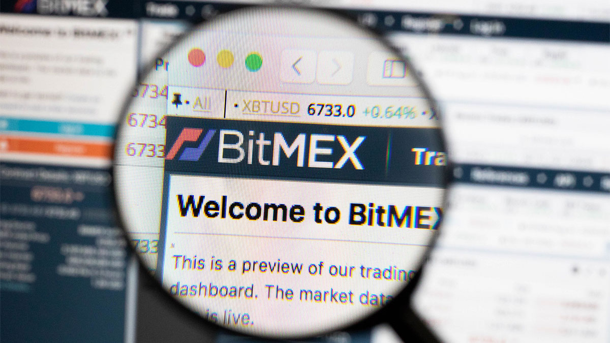 Bitmex-Exposed