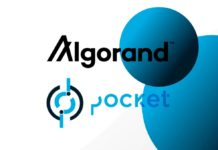 algorand-pocket