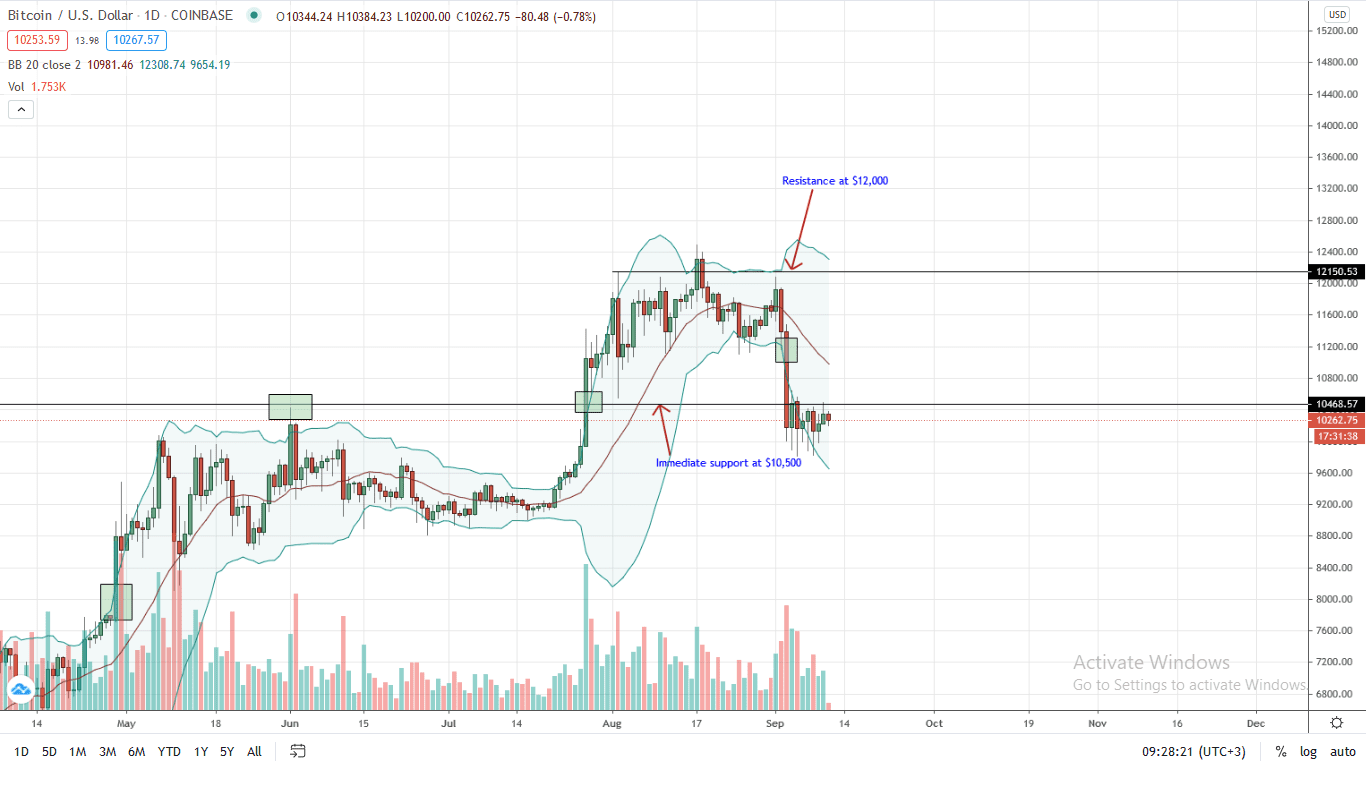 Bitcoin Price Daily Chart for Sep 11